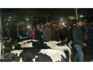 CHP'li Balbay'dan Suriyeliler için 'süt' önerisi
