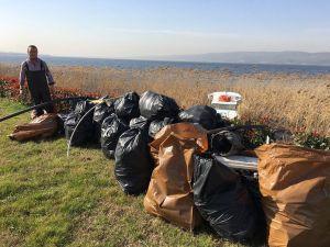 Sapanca Gölü'nde temizlik çalışmaları