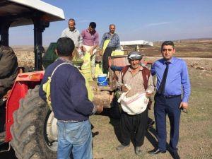 Kilis'te Meralara Gübre Atılıyor