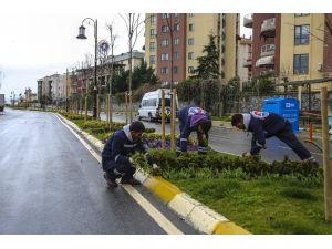 Maltepe'de Parklara Bahar Düzenlemesi