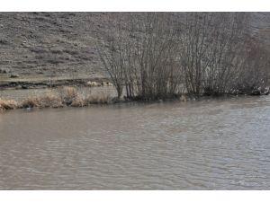 Kars'ta Tarım Arazileri Sular Altında Kaldı