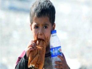 İsveçli İş adamı Sığınmacı Çocuklar İçin 10.7 Milyon Euro Bağışladı