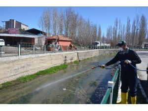 Bünyan Belediyesi Larva İle Mücadeleye Erken Başladı