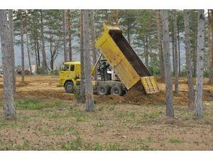 Abana Kent Ormanında Çalışmalar Sürüyor