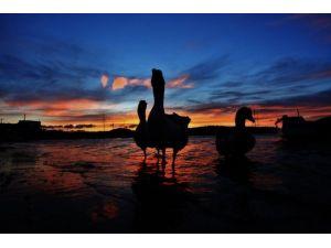 Bodrum'da Günbatımı Renkleri Büyülüyor
