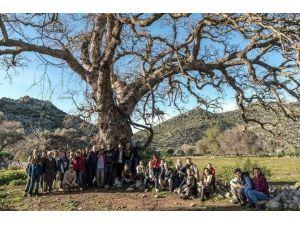 Datça Ve Bozburun'da Birlikten Kuvvet Doğuyor