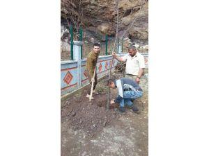 Okul Bahçesi Köylülerin Yardımı İle Yeşillenecek