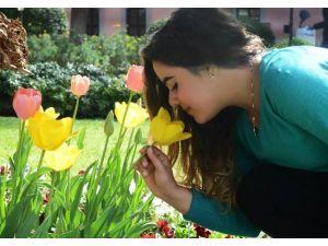 Antalya Sokaklarına 7 Milyon Çiçek