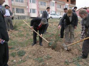 Sorgun'da Ağaçlandırma Çalışmalarına Hız Verildi