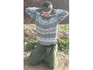 Üzerinde Sözde PKK/pyd/ypg Kimliği Bulunan Bir Terörist Yakalandı