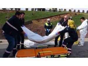 Park halindeki TIR'a çarpan belediye işçileri can verdi