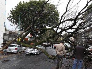 Meksika'da fırtına 5 can aldı