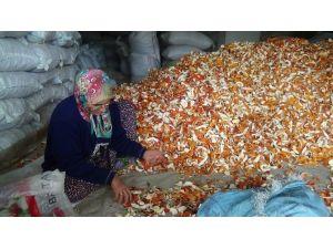 Portakalın Kabuğu Kendisinden Pahalı