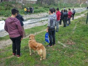 Köpekleri Uğruna Dereye Atladılar
