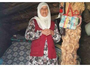 74 Yaşındaki Kadının Yaşam Mücadelesi