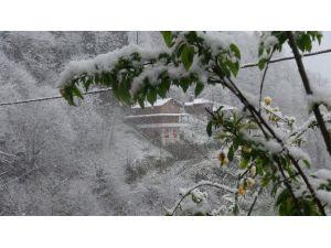 Rize'de Soğuk Hava Ve Kar Yağışı Yüksek Kesimlerde Etkili Oluyor
