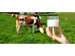 ADÜ'den Dünyada Güvenilir Süt Üretimi Projesine Akademik Destek