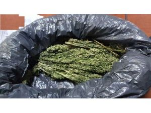 Siirt'te Uyuşturucudan 3 Kişi Tutuklandı