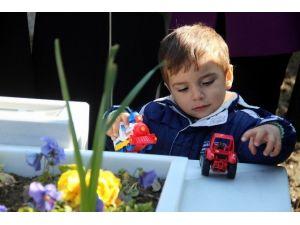Minik Eymen Şehit Babasının Mezarında Oyuncaklarıyla Oynadı
