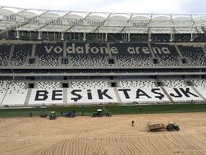Vodafone Arena'da çimler seriliyor