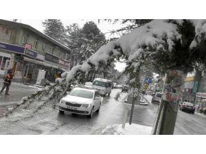Bitlis yeniden beyaza büründü