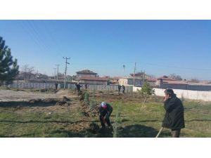Yeşiltepe'de Fidan Dikme Seferberliği Başladı