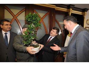 21 Mart Dünya Ormancılık Günü Trabzon'da Kutlanıyor