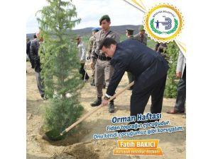 """Başkan Bakıcı: """"Ormanlar Dünyamızın En Önemli Servetleridir"""""""