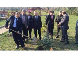 Gökçebey'de Ormancılık Günü Nedeniyle Tören Düzenlendi
