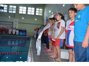 Yüzme Grup Müsabakaları'nda İlk Gün Sonuçları