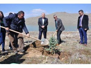 """""""Ağaç Kardeşliği"""" Projesi Hayata Geçirildi"""