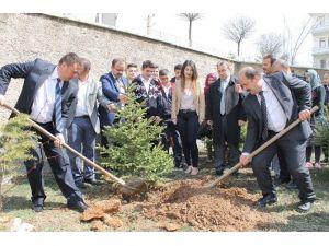 Akdağmadeni İlçesinde Ormancılık Günü Kutlandı