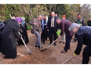 Yaşlılar Ve Çocuklar Fidanları Toprakla Buluşturdu