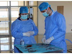 İlk kez kadavra üzerinde çene ve yüz bozukluğu cerrahisi eğitimi verdi