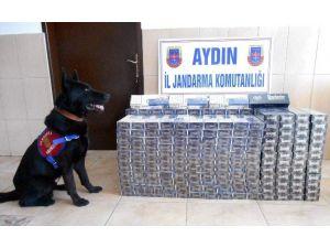 Aydın'da 7200 Paket Kaçak Sigara Yakalandı