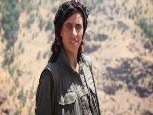 PKK'nın YPS Lideri Şırnak'ta Öldürüldü