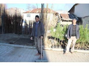 Varto'da Fidan Satışları Başladı