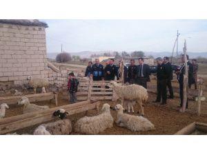 200 Kuzusu Telef Olan Çobana Geçmiş Olsun Ziyareti
