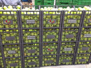 Güvenlik güçlerine 22 ton elma