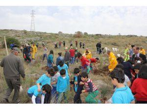 Kozan'da Orman Haftası etkinliklerinde 10 bin fidan dikildi