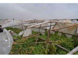 Fethiye'de Fırtına Seraları Vurdu