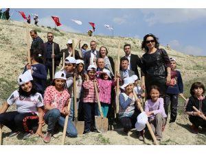 Sarayköy İlçesinde 3 Bin Fidan Toprakla Buluştu
