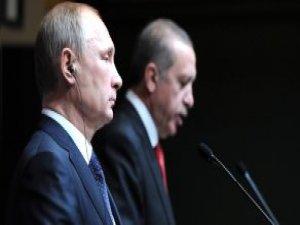 Gümrük Bakanı: Ruslar Türk Domatesini Yedi Hem de Daha Pahalı Yedi