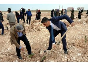 Osmanbey Kampüsü'nde 500 Fidan Toprakla Buluşturuldu