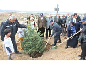 Kırıkkale'de 10 bin fidan toprakla buluşuyor