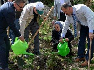 Şehit Piyade Yüzbaşı Çiğa adına hatıra ormanı oluşturuldu
