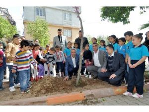 Büyükşehir, Okulların Bahçelerini Ağaçlandırıyor