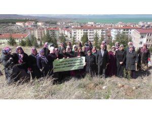 Beyşehir'de Kız Kur'an Kursu Öğrencileri Fidan Dikti