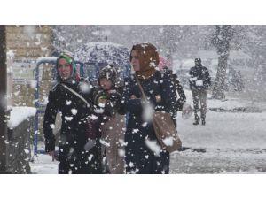 Bitlis'te yoğun kar yağışı etkili oluyor