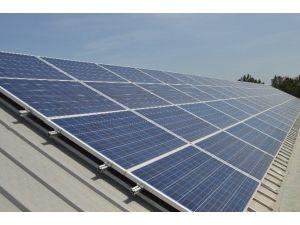 Bölgenin İlk Güneş Enerji Santrali'nde 800 Mw Enerji Üretildi